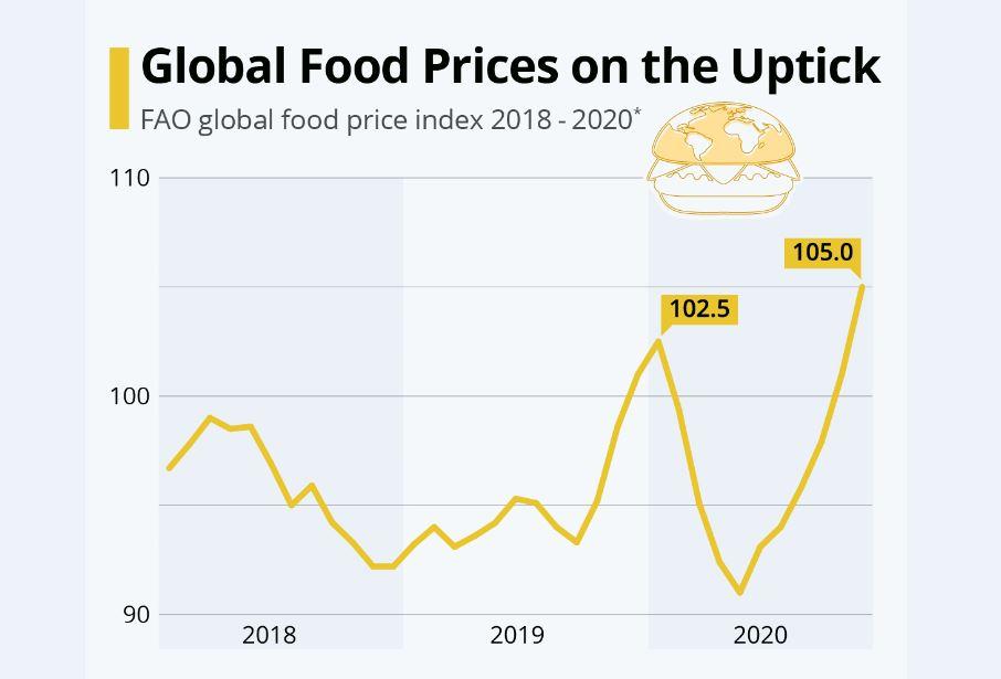 افزایش قیمت غذا در جهان در سالی که گذشت
